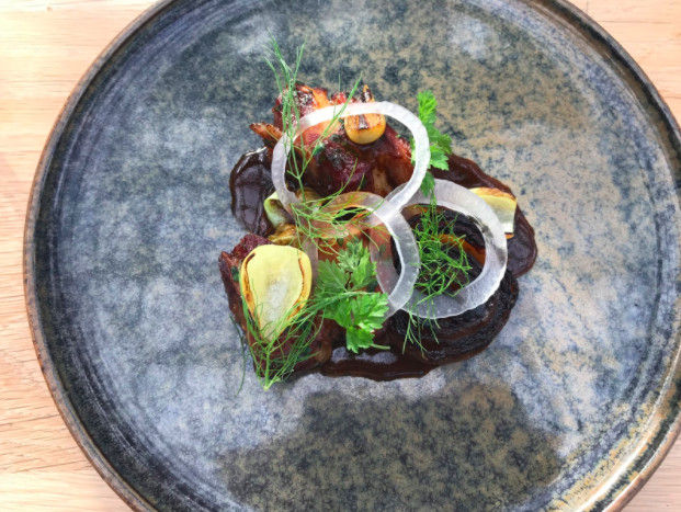 Cuts of meat lie below thin circles of onio and herbal garnishes in a dark sauce on a mellow-blue colored ceramic plate.
