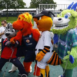 The Hartford Wolf Pack, Connecticut Sun, New Britain Bees and Hartford Yard Goats mascots pose for a picture.