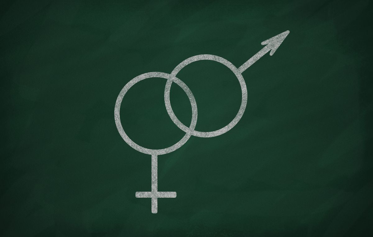 The catastrophically bad New York Times op-ed on transgender