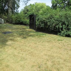 8/7/15: Midsummer heat has browned off the grass -