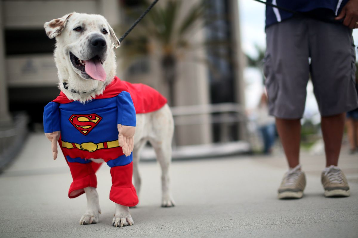 Comic Con Fans Attend The Annual Convention In San Diego