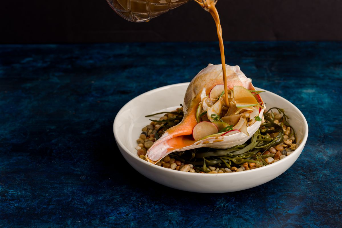A shaved whelk salad is presented in a whelk shell. From out of frame, a hand pours a stream of broth onto the dish.