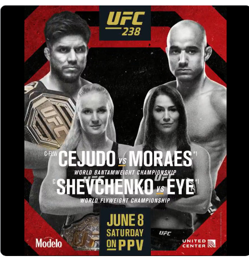 Silk Custom Poster Cejudo VS Moraes Shevchenko MMA Fight UFC 238 C-476