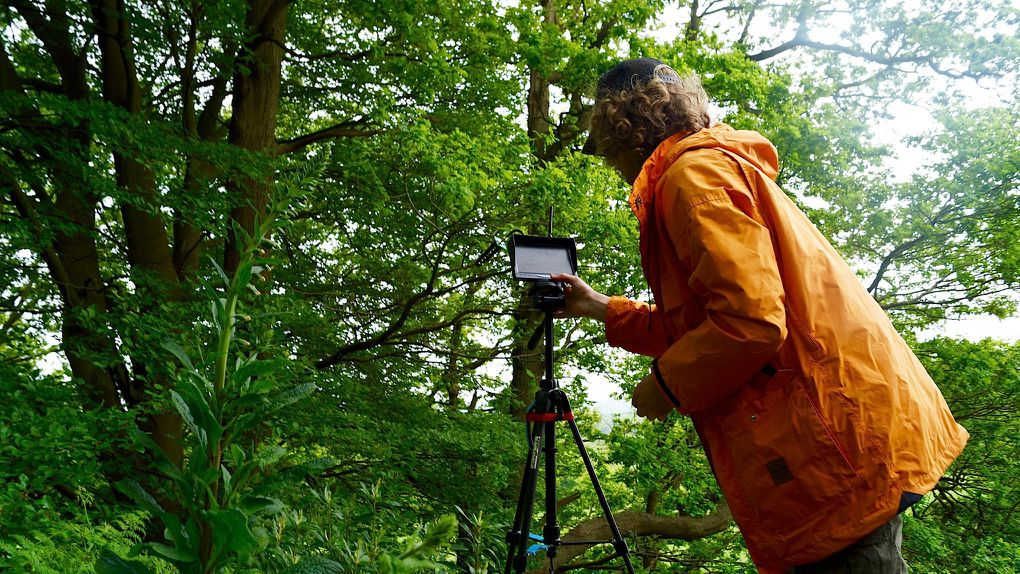 Racing Drones Through A Forest Is The Sport Of The Future