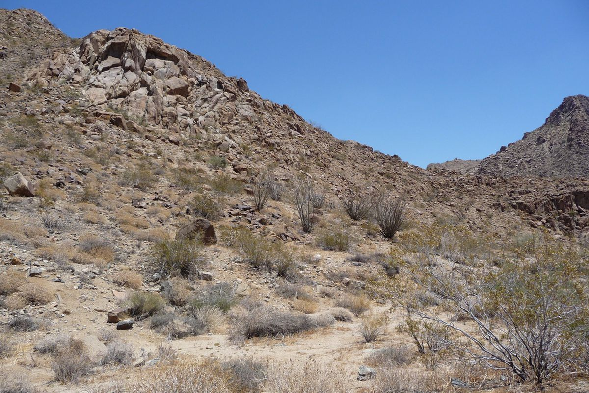 "via <a href=""http://upload.wikimedia.org/wikipedia/commons/c/c8/Joshua_Tree_National_Park_-_Colorado_Desert.JPG"">upload.wikimedia.org</a>"