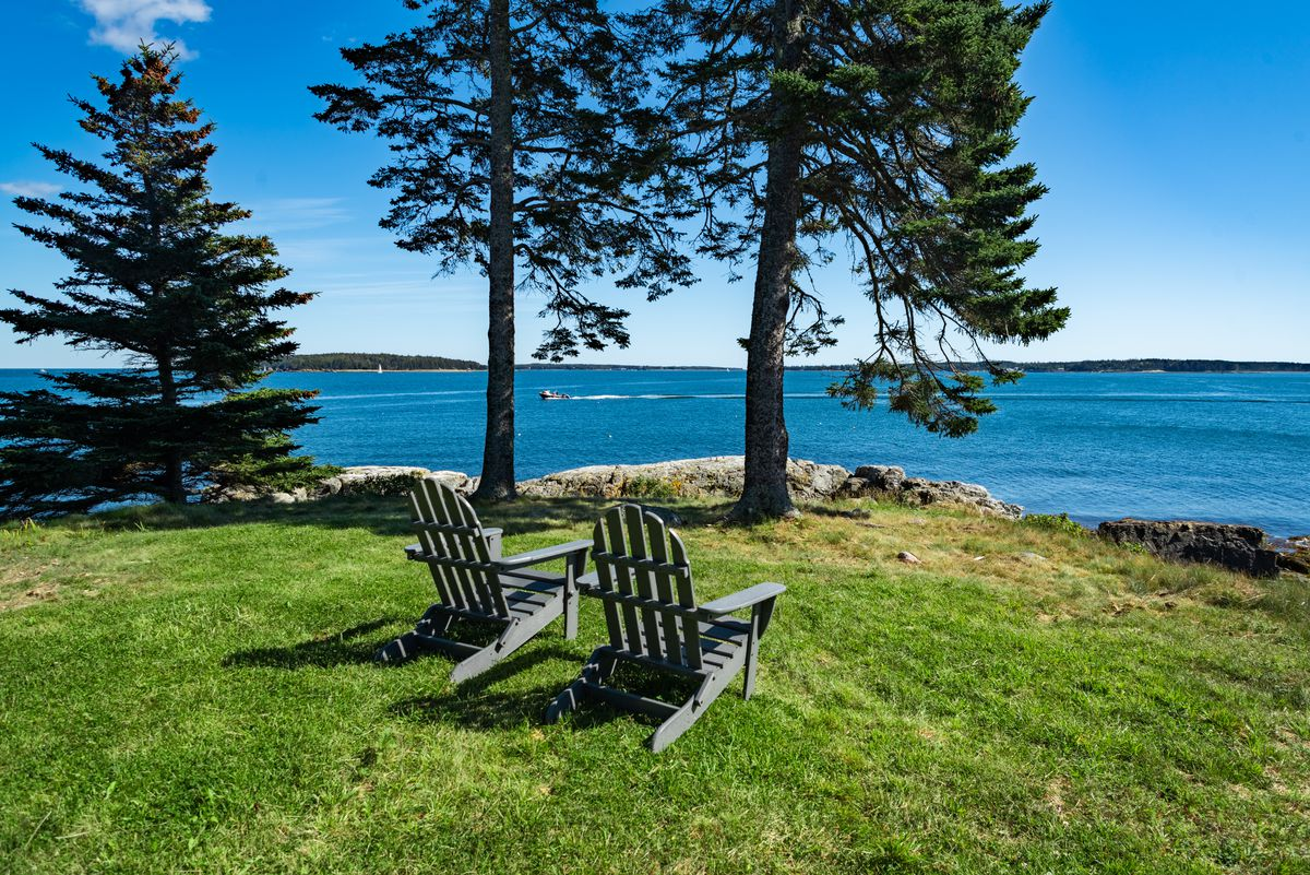 Two Adirondack chairs sit on a grassy slope in front of the water with three pine trees.