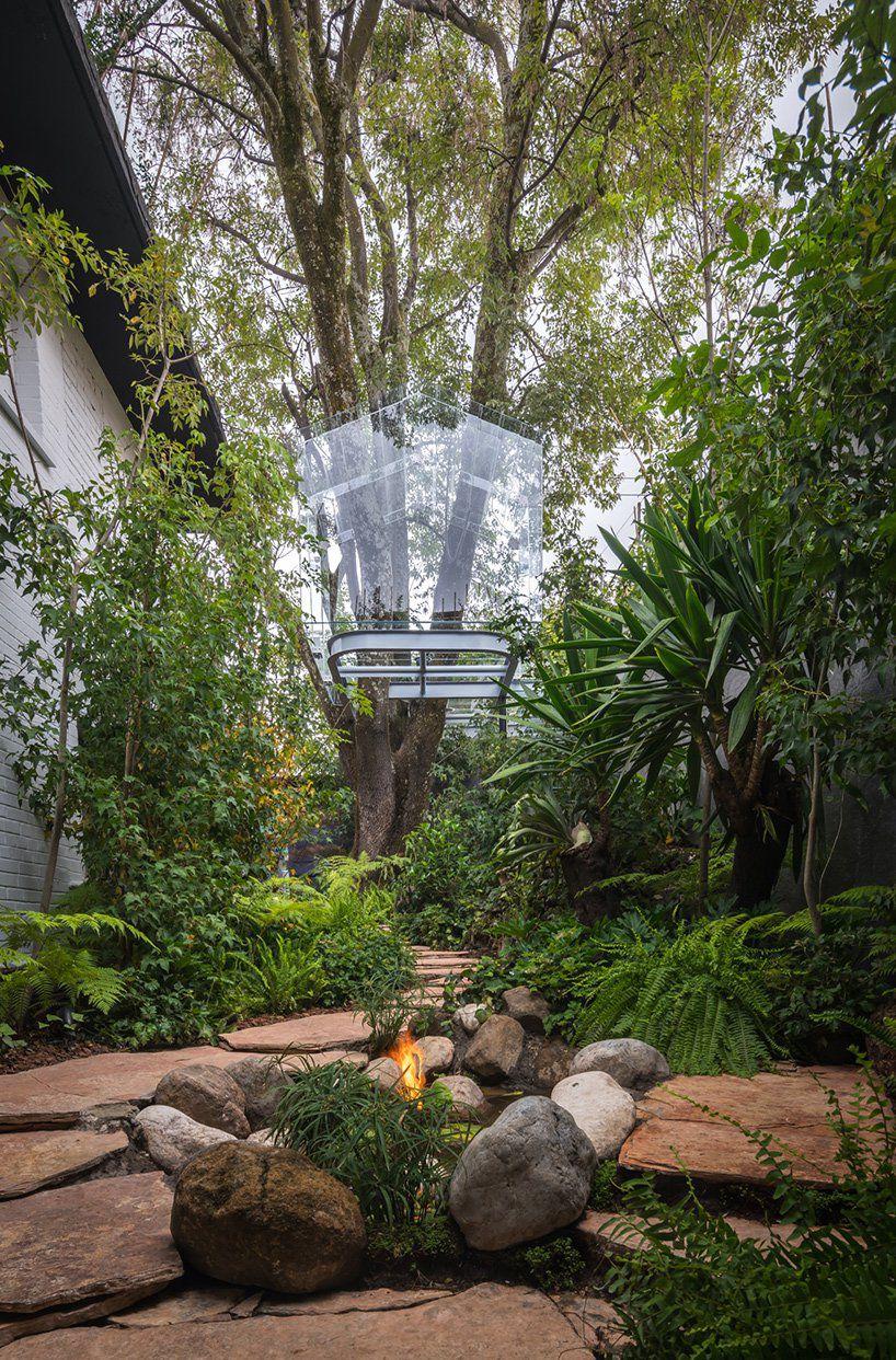 Glass treehouse in backyard