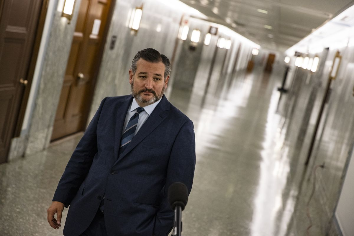 The camera has captured Cruz at an angle, the many-doored hallway behind him appearing at a 45-degree slant. The senator, in a navy suit, white shirt, silver and blue tie, and with a salt and pepper beard, frowns slightly as he prepares to speak into a microphone.
