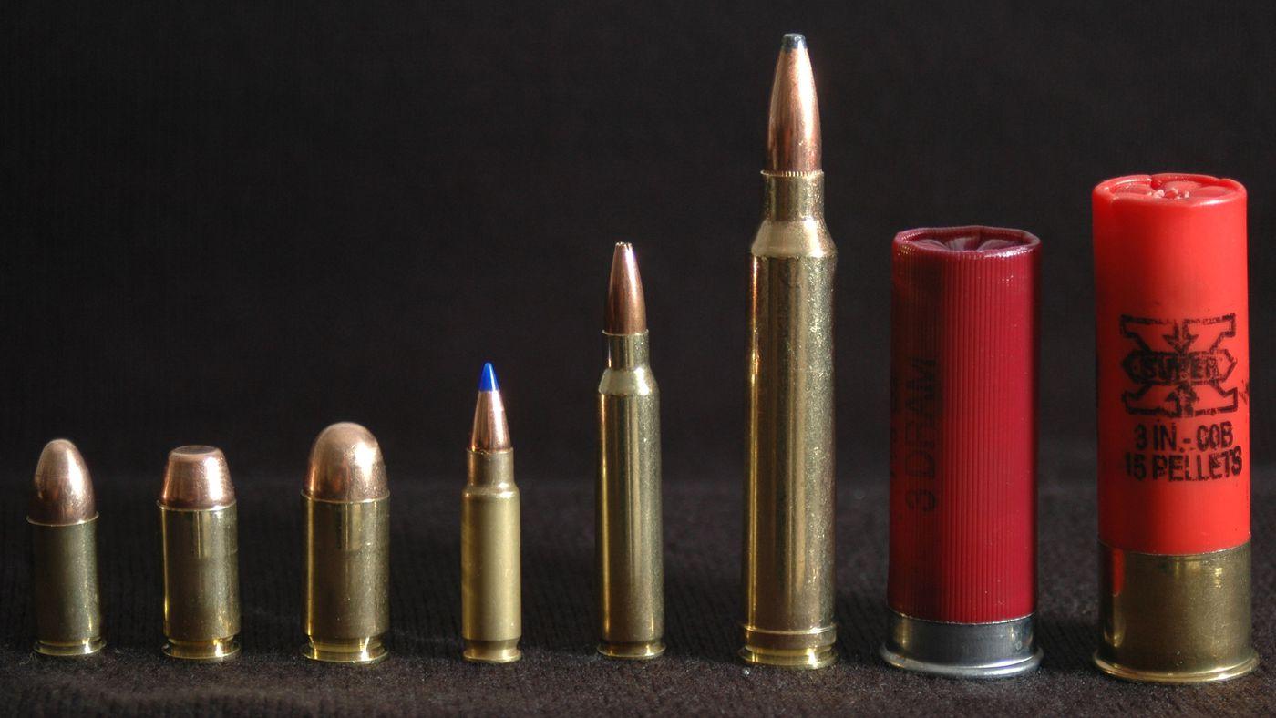 Caliber, cartridges, and bump stocks: guns, explained for