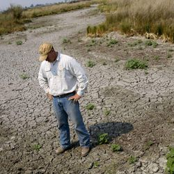 Joel Ferry stands on a section of his property where 300 cattle would normally be grazing but cannot due to the drought on Aug. 16, 2012.