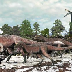 An artist's rendering shows Yutyrannus huali and other smaller dinosaurs roaming 125 million years ago.