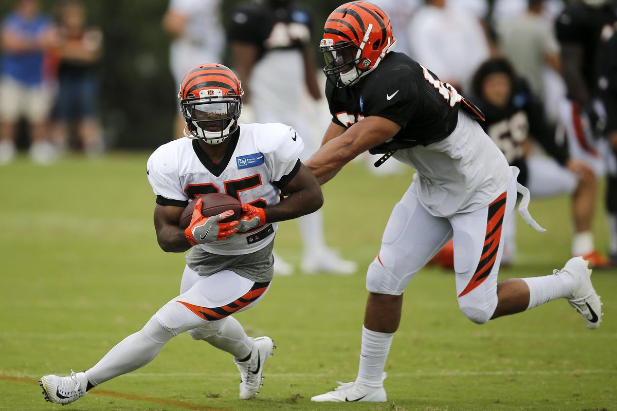 11949146 2018 NFL Preseason Report: Cincinnati Bengals - Fake Teams