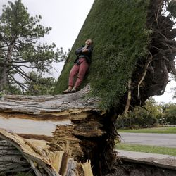 Anna Edler leans against an uprooted patch of grass still attached to the roots of a tree that was felled by high winds in Liberty Park in Salt Lake City on Tuesday, Sept. 8, 2020.