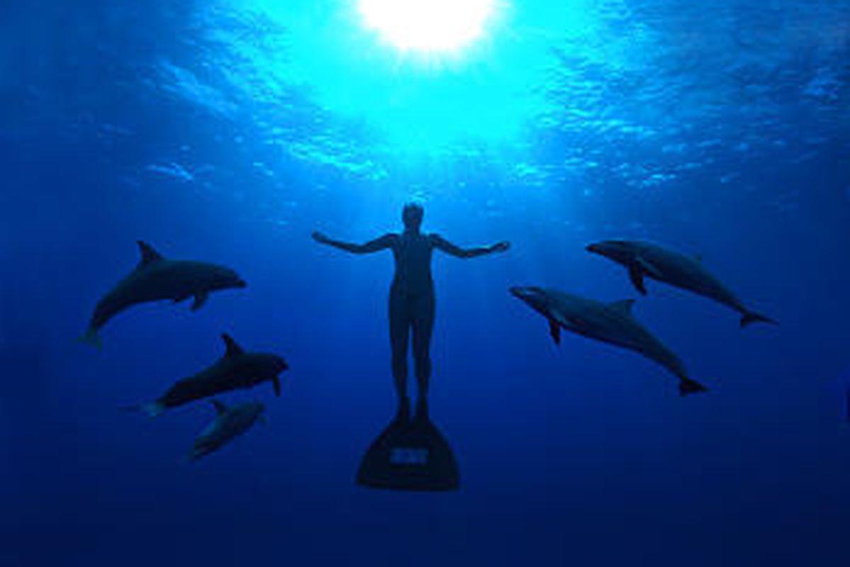 "Mandy-Rae Cruickshank in ""The Cove,"" a disturbing documentary."