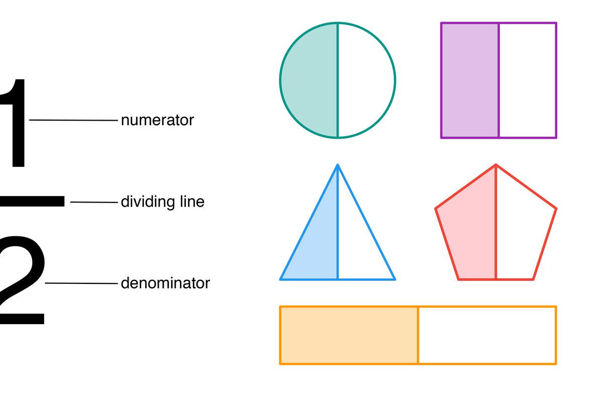 One half fraction with the numerator, dividing line, and denominator labeled. Divided into two equal parts, the symmetrical shape of a circle, square, triangle, pentagon and a rectangle illustrate the fraction. arithmetic, mathematics