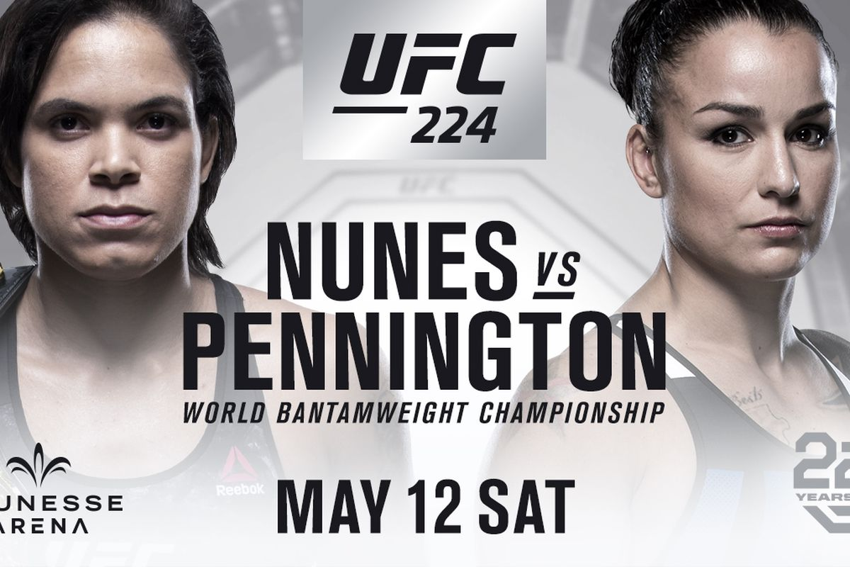Image result for ufc 224