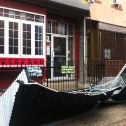 Canopy Down at Luckydog in Williamsburg.