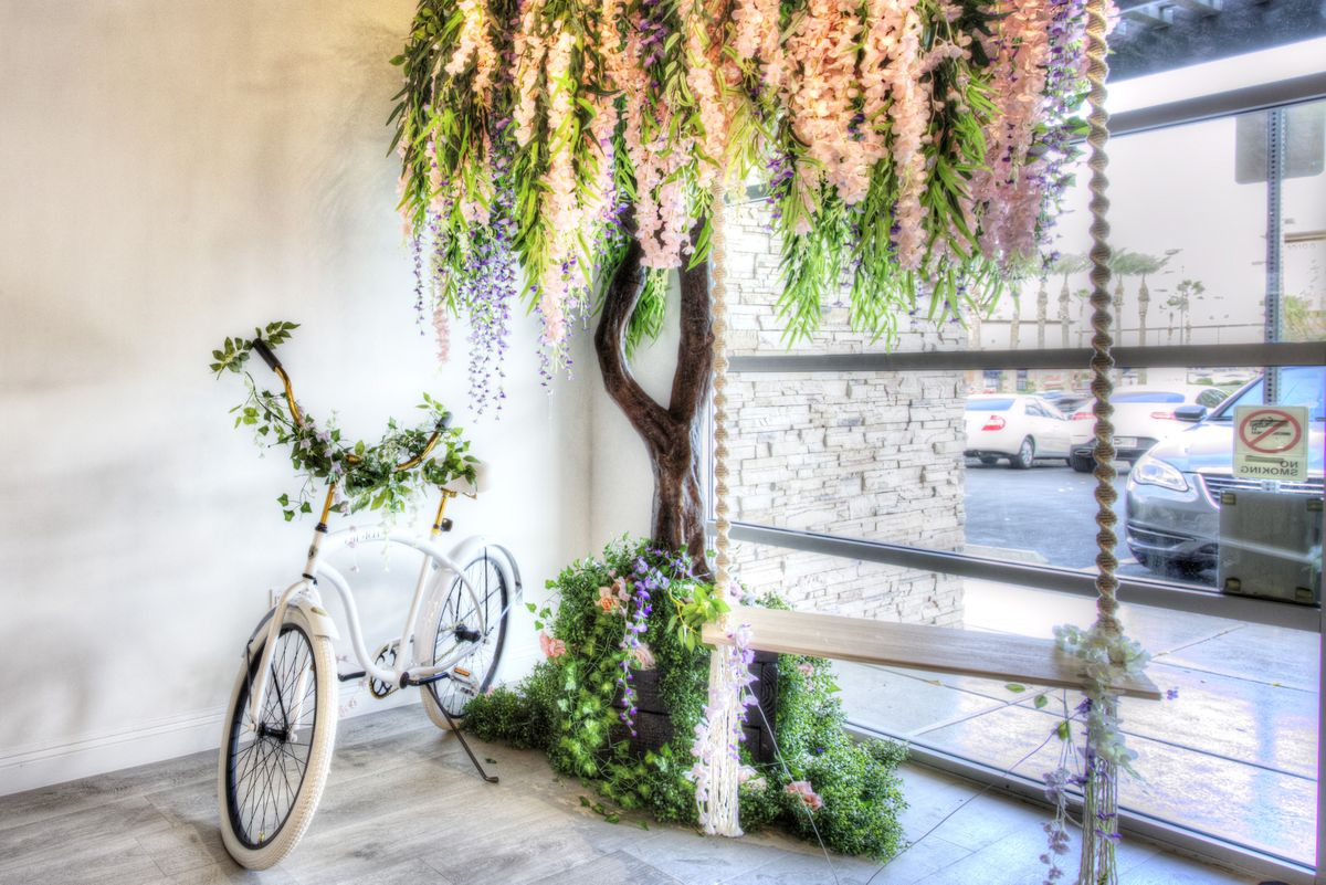 A tree with a swing and a bicycle at Cafe Lola
