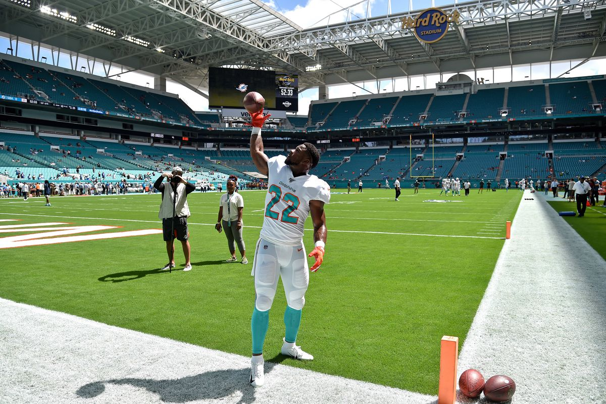 Miami Dolphins running back Mark Walton plays catch with fans before a game against the Los Angeles Chargers at Hard Rock Stadium.