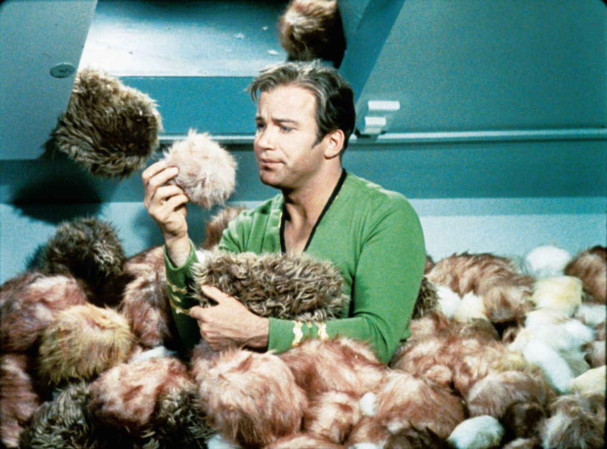 """William Shatner as Captain Kirk in a scene from """"The Trouble with Tribbles"""" from the TV series """"Star Trek."""" 