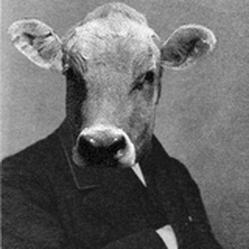 Horace E. Cow