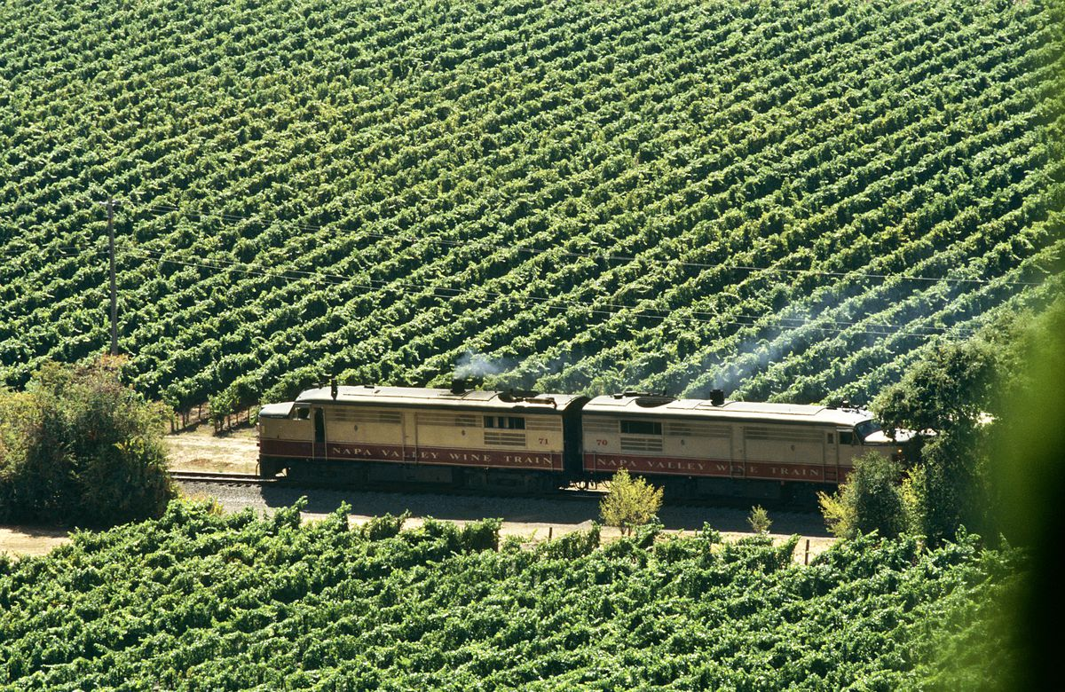 A train with a sign that reads Napa Valley Wine Trains rides along a track. On the other side of the track is a vineyard with many vines.