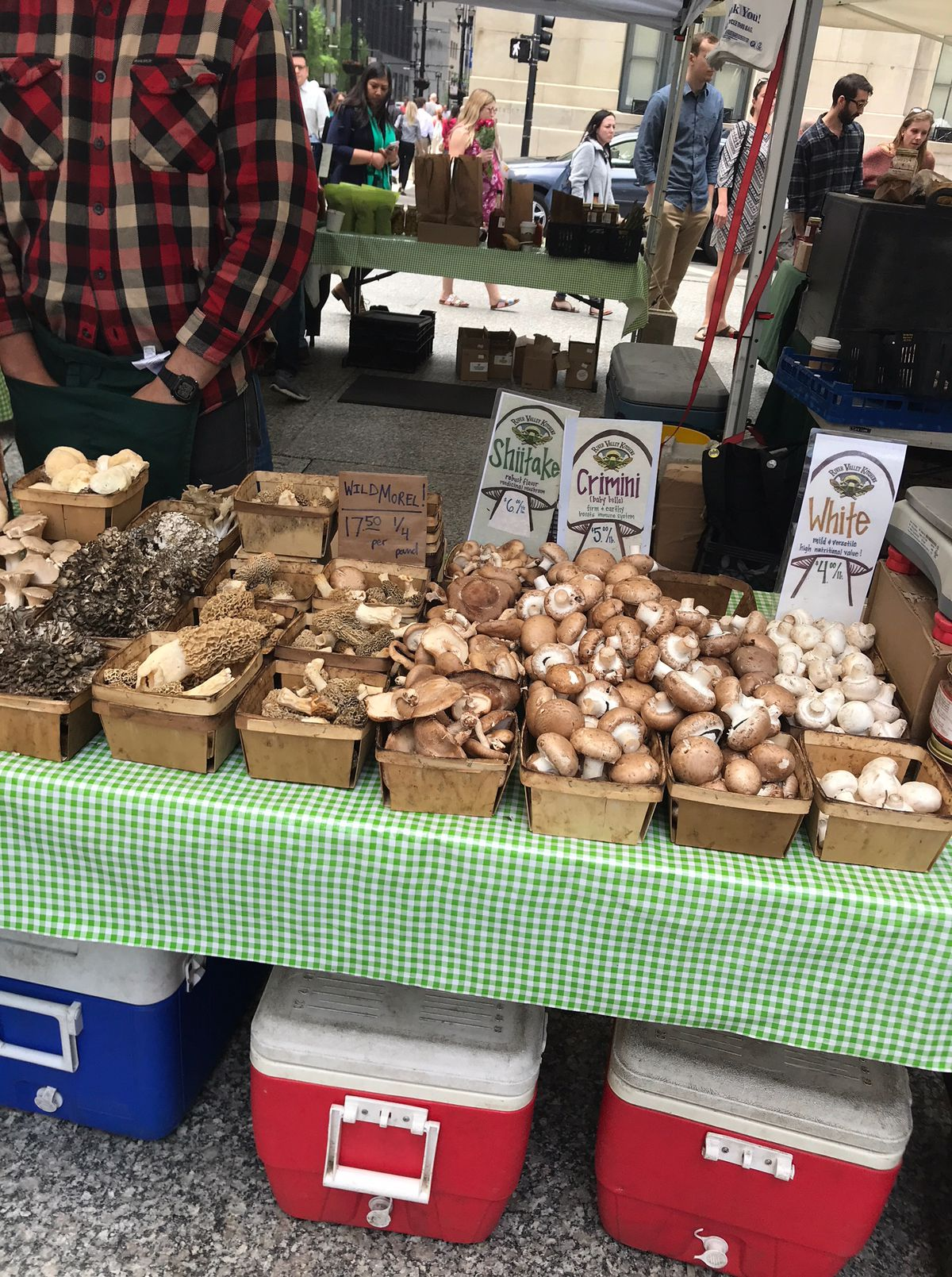 A variety of mushrooms for sale at the Daley Plaza weekly Farmers Market.   Provided to the Sun-Times