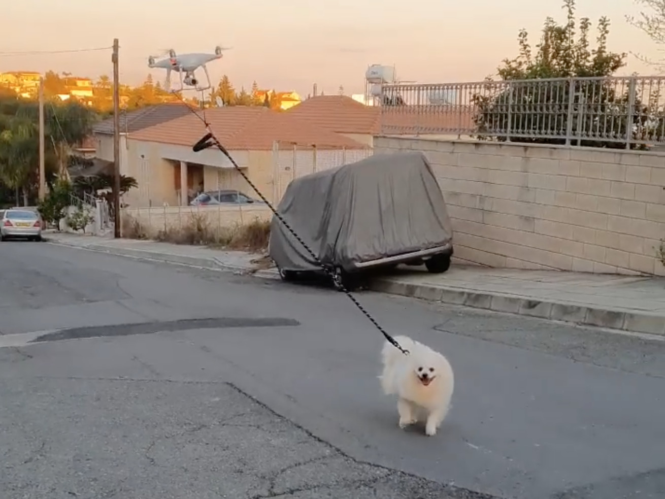 """Man """"Walks"""" Dog With A Drone While In Quarantine"""