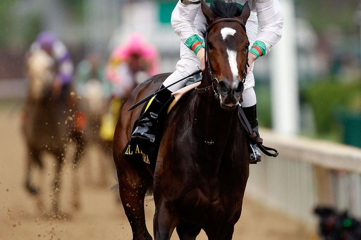 LOUISVILLE, KY - MAY 01: Jockey Calvin Borel rides Rachel Alexandra to victory during the 135th running of the Kentucky Oaks on May 1, 2009 at Churchill Downs in Louisville, Kentucky. (Photo by Jamie Squire/Getty Images)