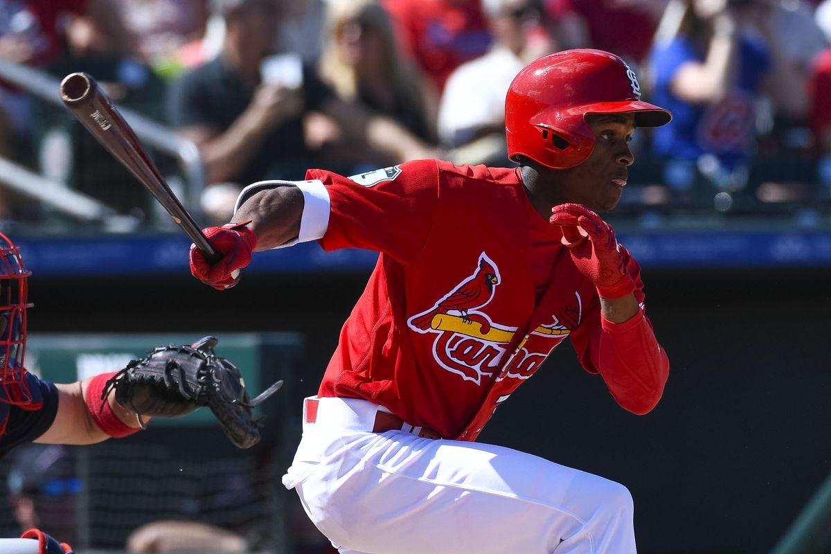 MLB: Spring Training-Atlanta Braves at St. Louis Cardinals