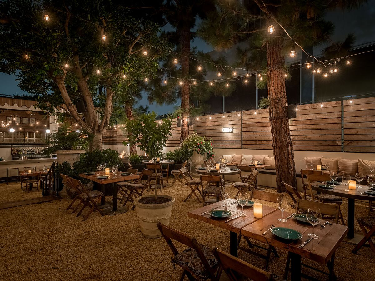 Green trees and rocky ground covered by old wooden tables and under string lights.