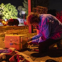 Crystal Porter transfers Doves from a destroyed bird cage into a dog carrier, after a tornado touched down near suburban Woodridge, Monday, June 21, 2021.