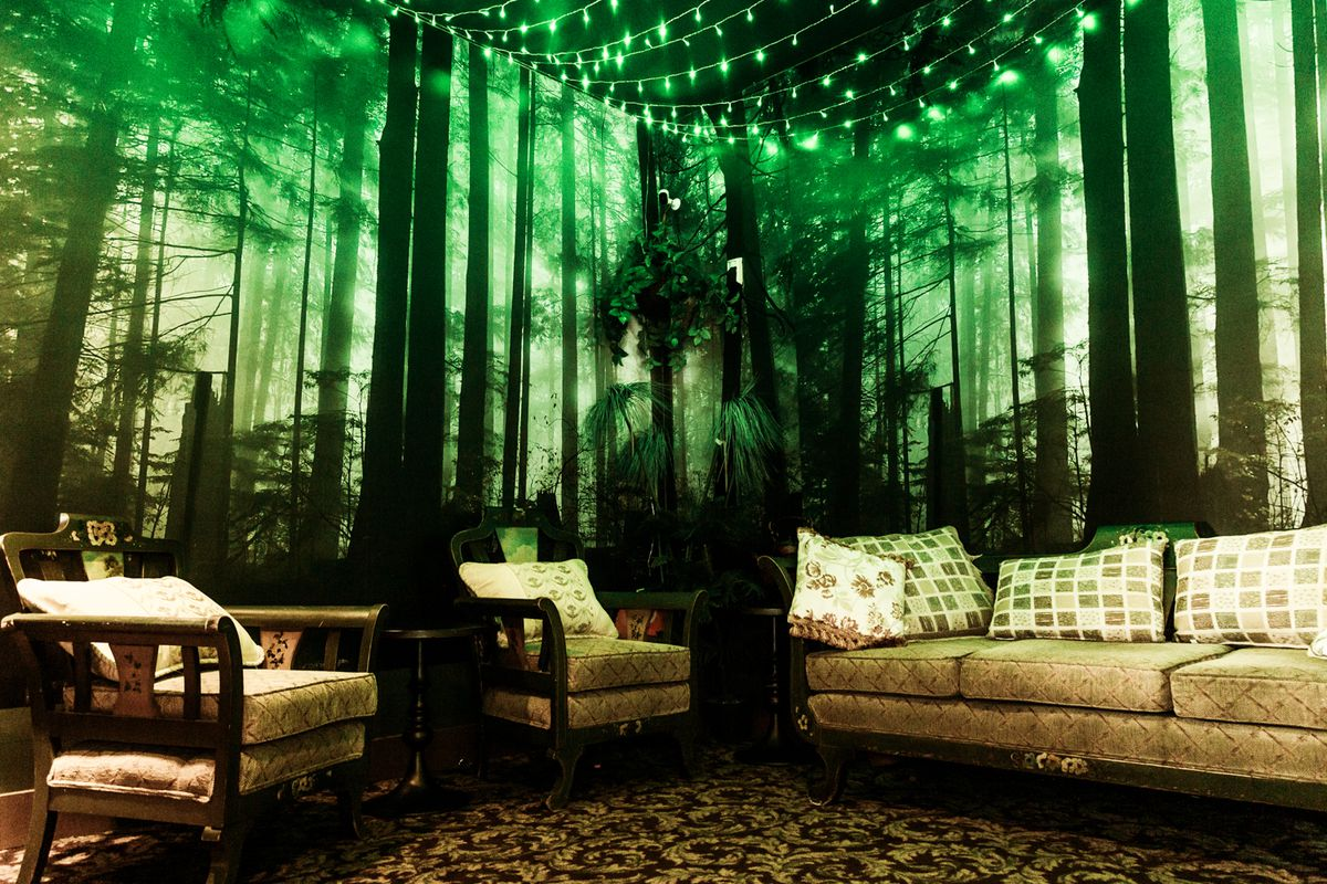 couches with a background decorated to look like a forest