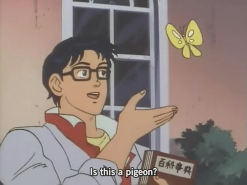 """6c2d173a Is this a meme?"""": the confused anime guy and his butterfly ..."""