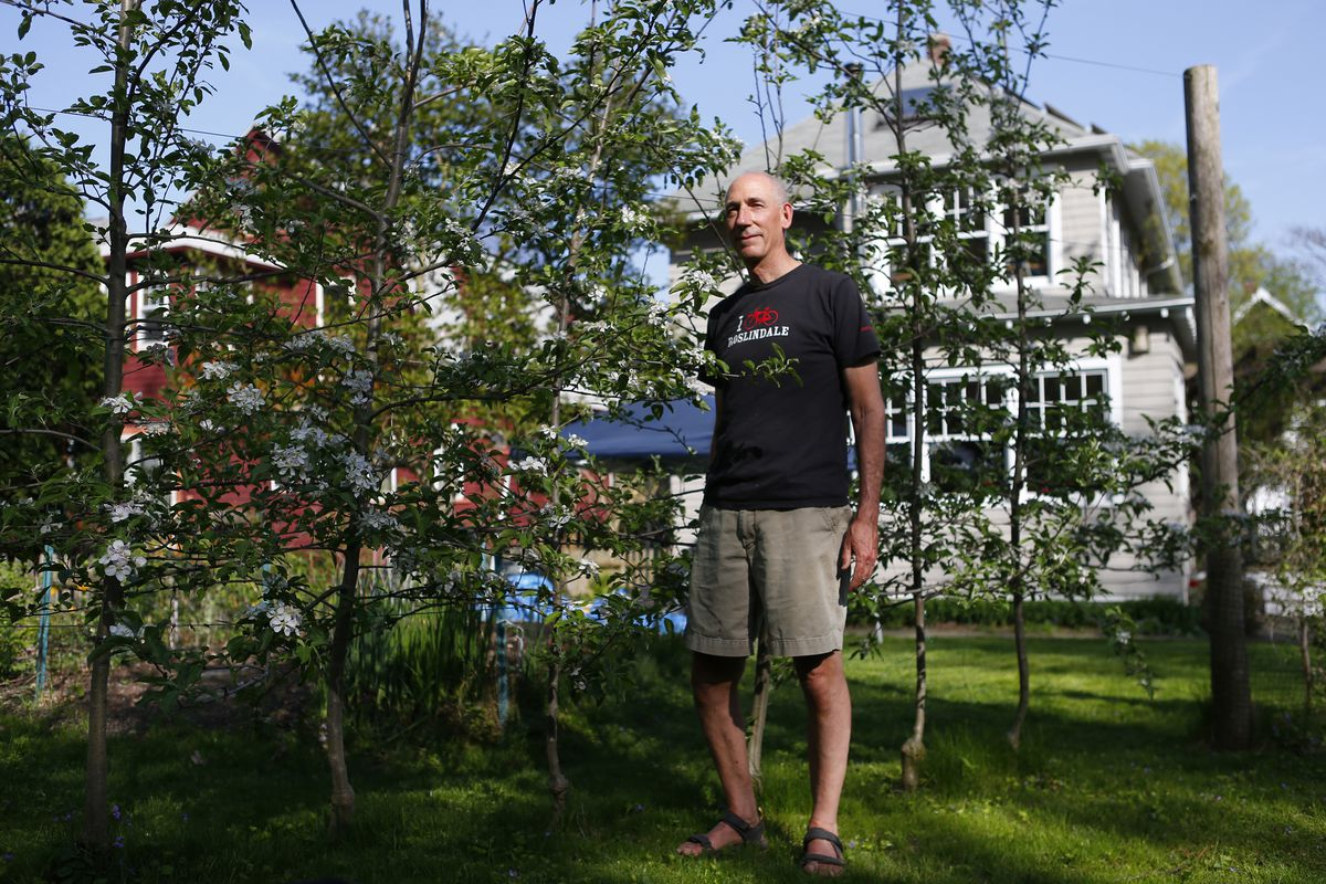 A man standing on a lawn next to some small apple trees.