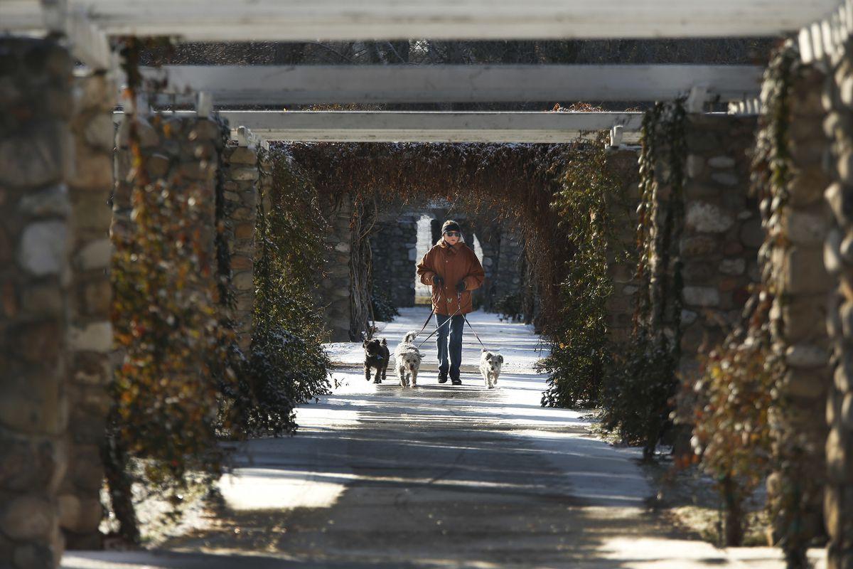 Marcia Ripplinger walks her dogs at Liberty Park in Salt Lake City on Sunday, Dec. 17, 2017.