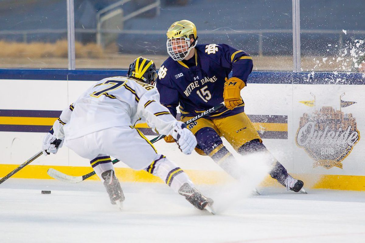 Image result for michigan notre dame hockey