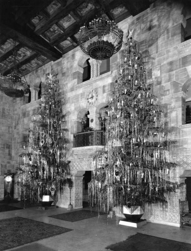 Christmas trees at Barker Bros