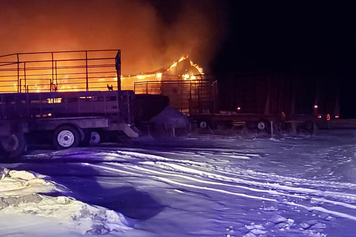 A horse was killed in a barn fire Feb. 14, 2020, at Tower Hill Stables in Hampshire.