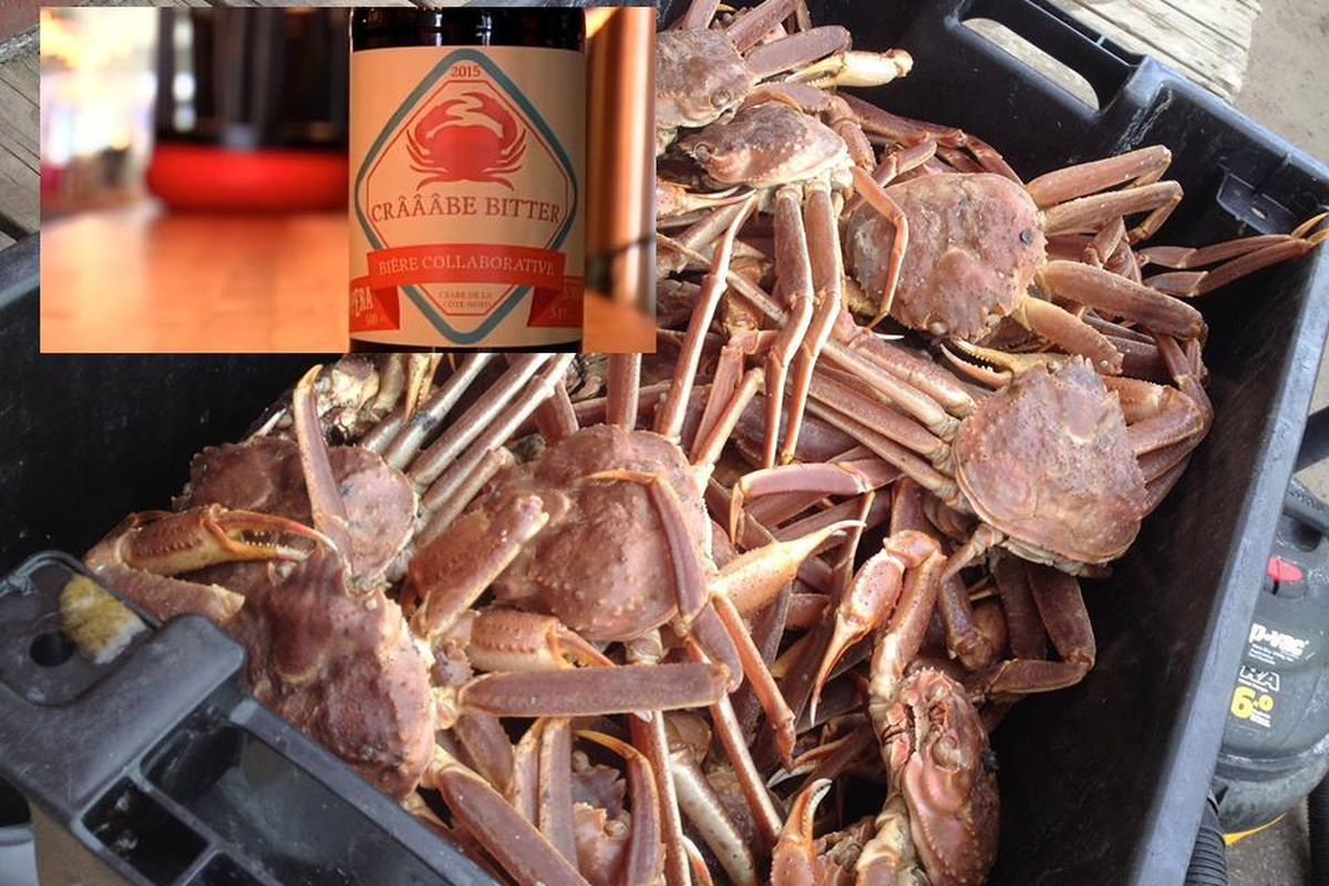 These crabs in your beer