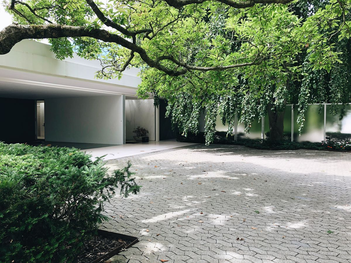 The carport and front door of a horizontally oriented modern house sit in the background under a canopy of trees overhanging a driveway paved in unusually shaped geometric stones.