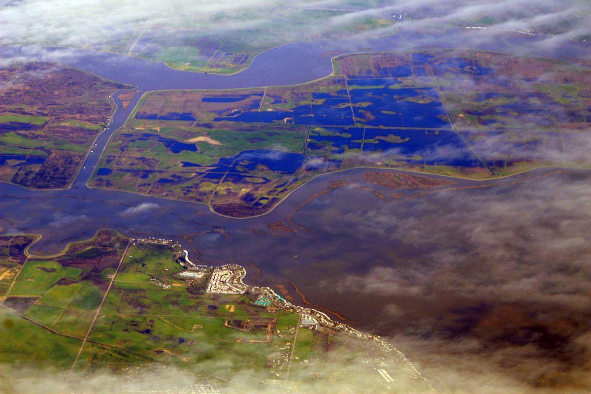 California delta
