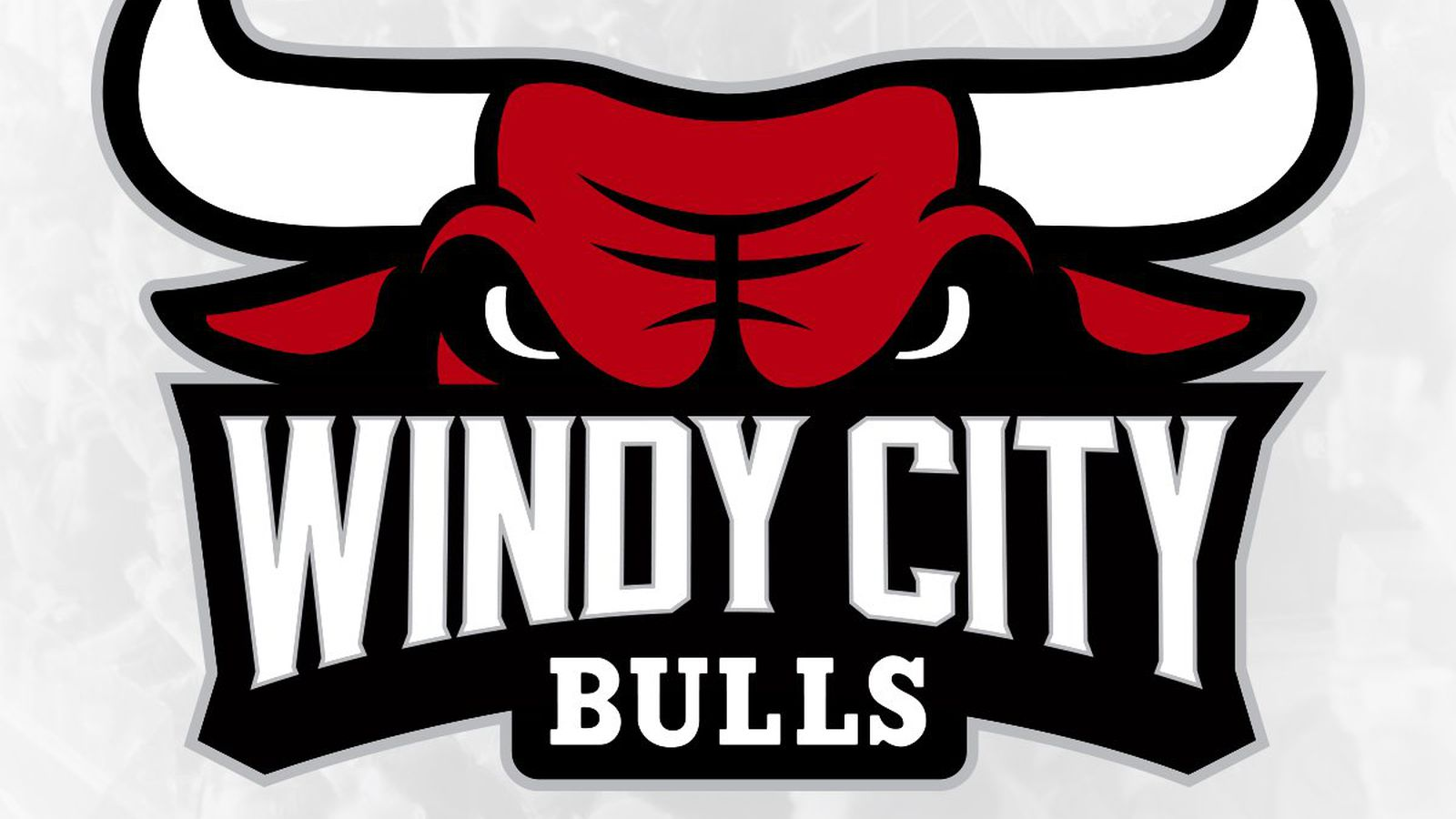 why is the d league bulls logo angrier than the chicago bulls logo
