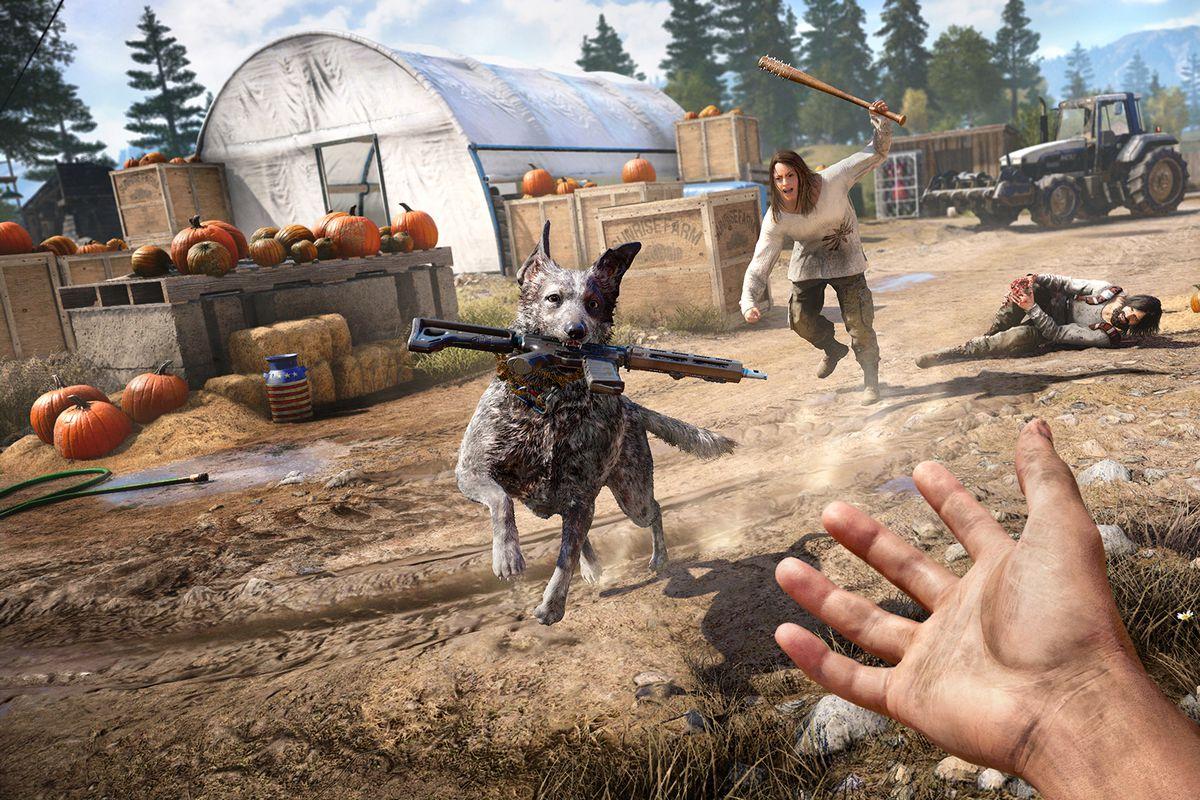 A dog runs a gun back to the player