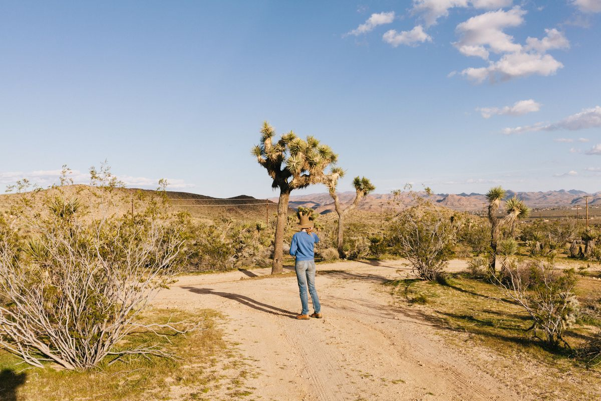 Nienaber stands under a Joshua Tree on her property.