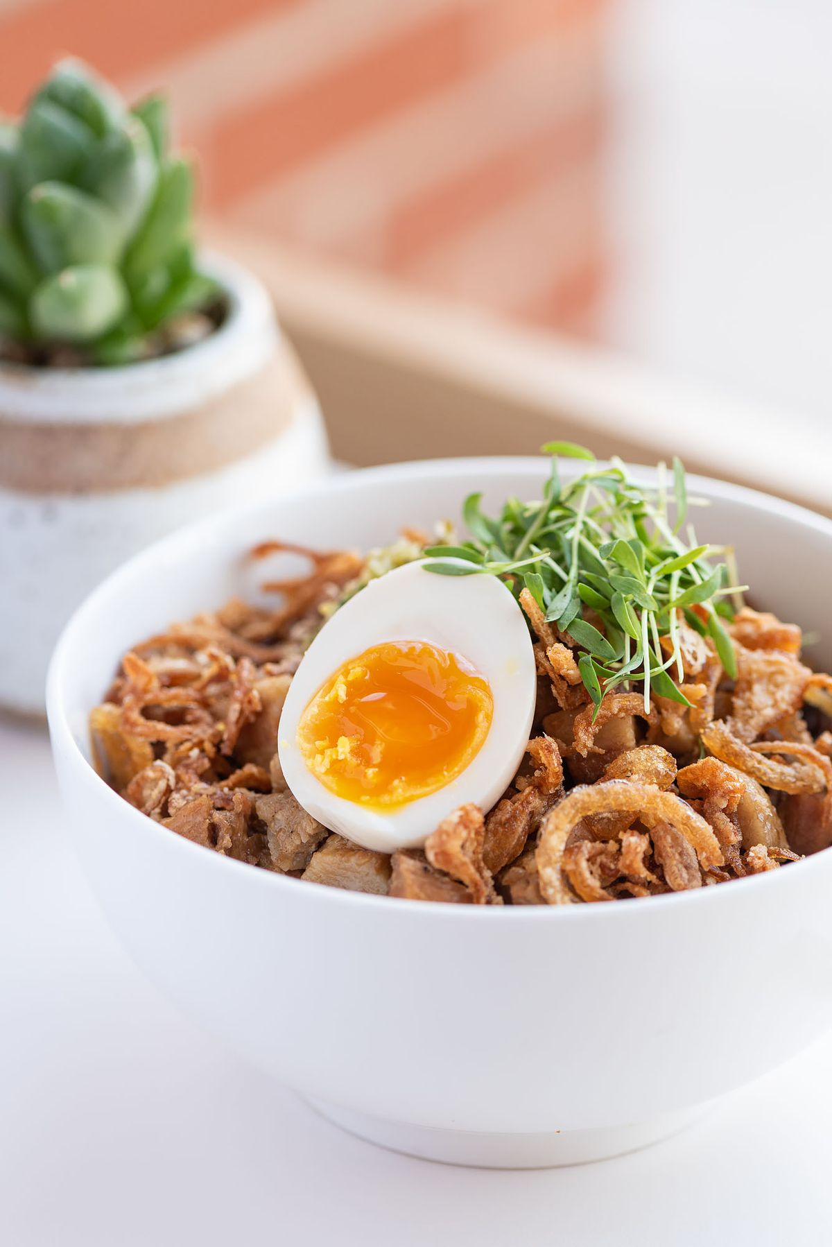 A bowl of rice with pork and an egg.