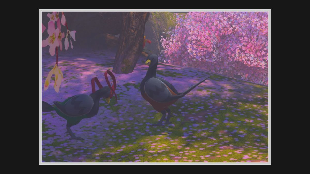 A male and female Unfezant smile among cherry blossom trees