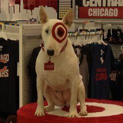 Bullseye! Good boy.
