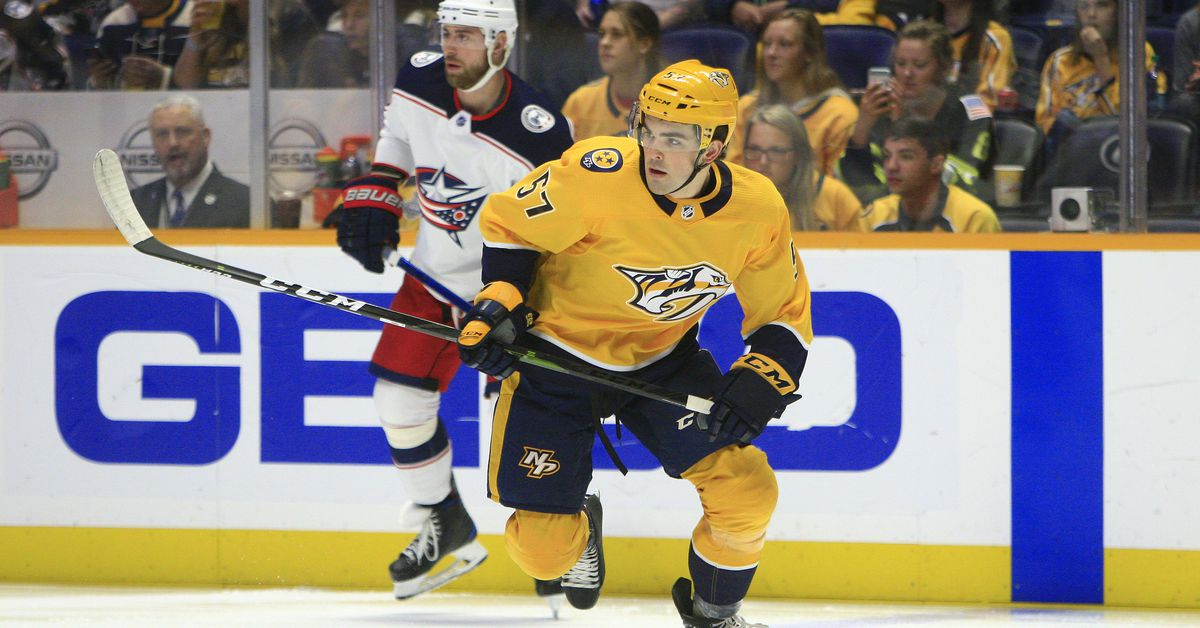 Nashville Predators vs Columbus Blue Jackets Preview: Was that a cannon or the Preds' playoff chances?