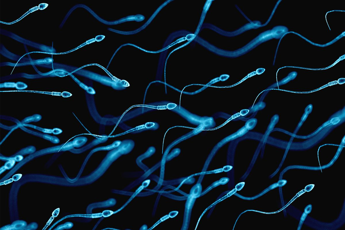 Yes, sperm counts may be dropping, but it's not time to panic yet